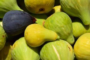 figs-1608419_1280-300x200