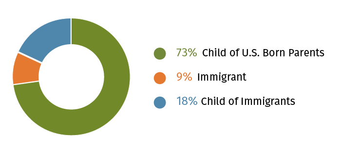 Race Survey Immigration Experience Diagram